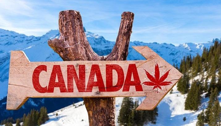 وسایلی که نباید به کانادا ببریم
